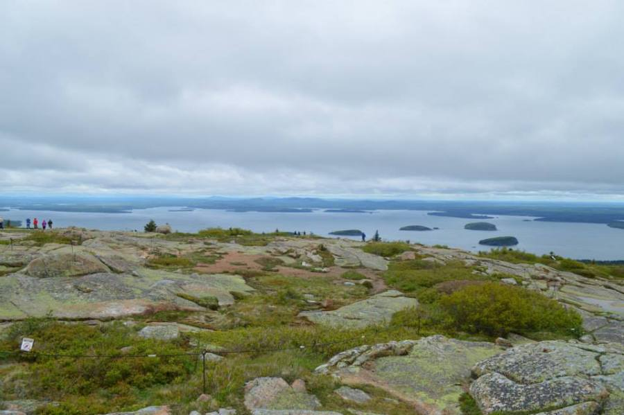 The majestic view from Cadillac Mountain!